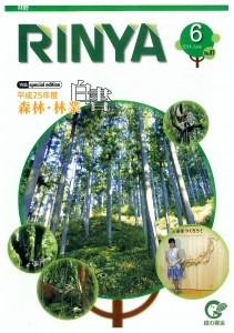RINYA26.6